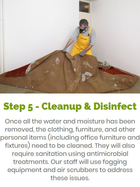 sewage cleanup & disinfection